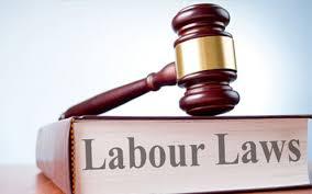 Training Labour Law
