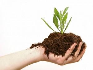 Pelatihan Pupuk Organik Pengolahan Bahan, Pembuatan Produk, dan Penerapan Pemakaian