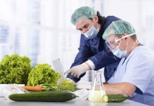 Training Food Safety
